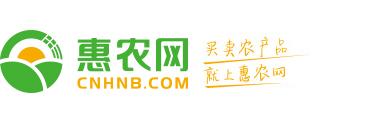龙8国际官网网页版网